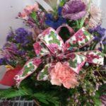 Little falls flowers - Flowers Little Falls