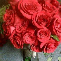 Little Falls Roses