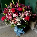 Little falks ny florist