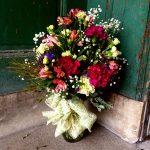Dolgeville flowers