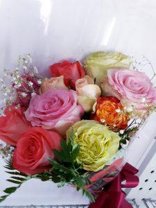 Dozen roses of colors
