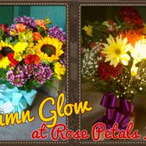 Autumn Glow Flowers
