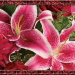 Teleflora Valentine Flowers Header