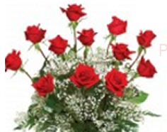 Graduation flower ideas - red roses bouquet