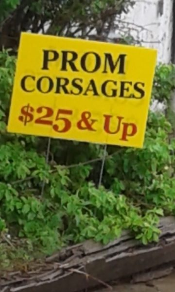 Prom-Corsages-$25-and-up